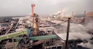 Plant Electrical Coal